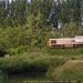 7842 Wijgmaal 08-08-2006