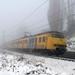 Plan V in de mist richting Emmerich. Elten 30-12-2010.
