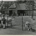 1956 Zuiderpark, kinderboerderij.