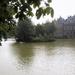 Eiland in de Hofvijver 31-07-2000