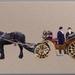 De Grote Markt, paarden met koets.
