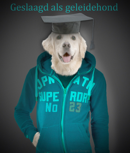 man hond