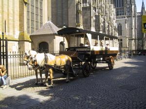 Rondrit met Paarden bij de Sint Jan