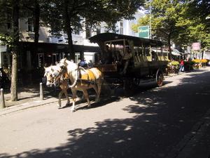 Rondrit met Paarden op de Parade