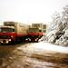 Ook in de sneeuw rijden de mannen van Storteboom