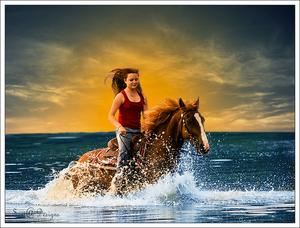 paard in zee