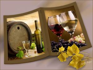 project wijn 2