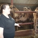 1 Berlicum, kamelenmelkerij _P1230430