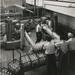 1950 Lulofsstraat 20-30, N.V. Melkinrichting De Sierkan