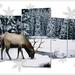 december-kalender-project