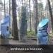 kunstwerk  in bos