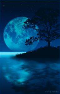 Een prachtige nacht