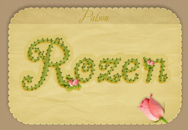 rozen sonia