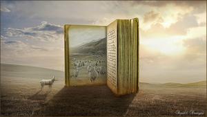 boek met schapen