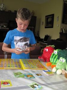 10) Ruben sorteert de kaarten