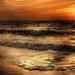 beach-2251739_960_720