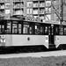 517, lijn 12, Mijnsherenlaan, 8-7-1954 (B. Willemsen)