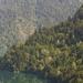 hd-achtergrond-met-blauw-meer-en-bergen-met-bos