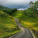 hd-achtergrond-met-groen-landschap-met-weg-in-de-heuvels