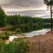 hd-achtergrond-met-meer-in-het-bos