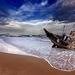 hd-achtergrond-met-scheepswrak-op-het-strand