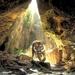 hd-achtergrond-met-tijger-in-een-grot