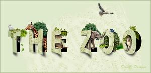 the zoo.