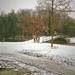 Winter in het Zuiderpark op 13-12-1981.