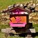 beehive-2183802_960_720