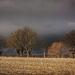 landscape-2132520_960_720