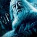 Albus_Percival_Wulfric_Brian_Dumbledore