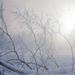 foto-van-een-landschap-met-sneeuw-en-mist-in-de-winter