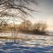 foto-van-een-winterlandschap-met-sneeuw-een-boom-en-mist-in-de-ve