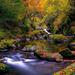 hd-landschap-wallpaper-met-herfst-bladeren-en-een-riviertje-met-b