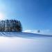 hd-sneeuw-wallpaper-met-een-winter-landschap-bedekt-met-een-dikke