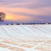 hd-winter-achtergrond-met-een-mooi-winter-landschap-met-wat-sneeu