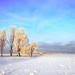 hd-winter-achtergrond-met-een-winter-landschap-met-veel-sneeuw-en