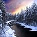 hd-winter-achtergrond-met-veel-bomen-langs-een-rivier-hd-winter-w