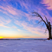 hd-winter-landschap-wallpaper-met-een-veld-met-sneeuw-met-een-enk
