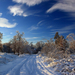 hd-winter-wallpaper-met-een-winterlandschap-met-een-besneeuwde-we