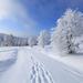 winter-landschap-met-een-laag-sneeuw