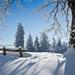 winterlandschap-met-een-pak-sneeuw-hd-winter-achtergrond