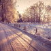 winterlandschap-met-een-weg-bedekt-met-sneeuw-hd-winter-achtergro