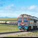 Davaaniy, Mongolië