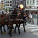 Roeselare-Sinterklaas-18-11-2017-62