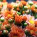 hd-bloemen-achtergrond-met-een-scherm-vol-oranje-madeliefjes-wall