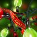 hd-kerst-wallpaper-met-rood-groene-kerstverlichting-hd-kerst-acht