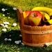 fruit-2826822_960_720