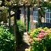 garden-2437534_960_720