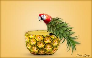 Ananaspapegaai
